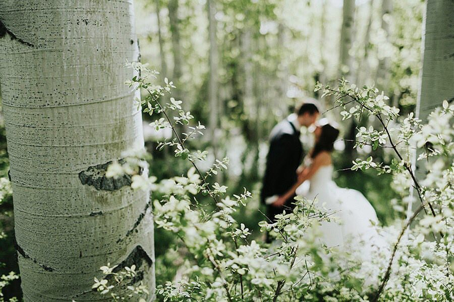 danagus_vailwedding_background